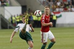 Hungria contra Países Baixos Futebol 2016 do qualificador do Euro do UEFA de Irlanda do Norte m Imagens de Stock Royalty Free