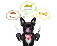 Hungrig hund med anförandebubblan Fotografering för Bildbyråer