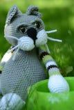 Hungrige Katze - Spielzeug Stockbild