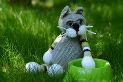 Hungrige Katze - Spielzeug Lizenzfreie Stockbilder
