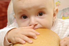 Hungry baby Stock Images