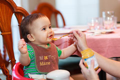 Hungry baby. Boy being fed a meal in a home setting Royalty Free Stock Image