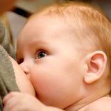 Hungry baby breast feeding closeup Royalty Free Stock Photos