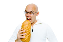 Hungry bald man bites a a large loaf. Studio. isolated Stock Photography