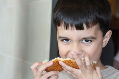 Hungry Boy. Hungry child devours a piece of bread with both hands royalty free stock photos