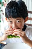 Hungry Boy Eating Burger Stock Photo