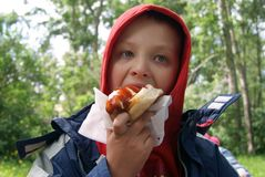 Hungry boy eating hot dog. Outdoor Stock Images