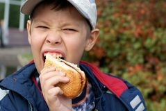 Hungry boy eating hot dog. Outdoor Stock Photography