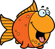 Hungry Cartoon Goldfish Stock Photo