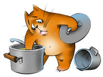 Hungry_cat. A hungry cat looking for any food Royalty Free Stock Image