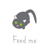 Hungry cat Royalty Free Stock Photography