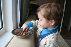 Hungry child eating meat Stock Photography