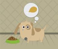 Hungry dog Stock Image