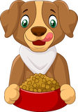 Hungry dog cartoon with dog food Stock Photography