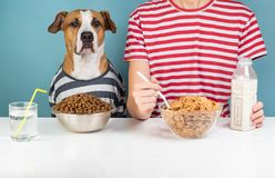 Hungry dog and human having breakfast together. Minimalistic ill royalty free stock photo