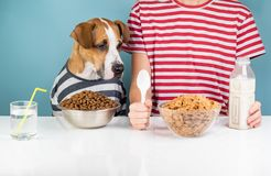 Hungry dog and human having breakfast together. Minimalistic ill royalty free stock photography