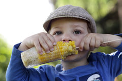 Hungry kid eating corn Royalty Free Stock Images