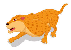 Hungry Leopard Cartoon Stock Images