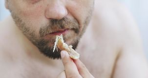 A hungry man. Close-up of a naked male with a beard eating. stock video