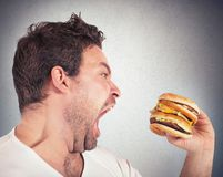 Hungry man. Insatiable and hungry man eating a sandwich Royalty Free Stock Image