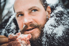 Hungry northern bearded eats meat. Survivor northern bearded man with a piece of meat. Portrait of a man with a beard devouring raw meat. Hungry northern Stock Photography