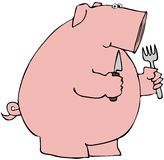 Hungry Pig Stock Photography
