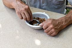 Hungry. Poor old man& x27;s hands an bowl of porridge . Selective focus. Poverty in retirement. Alms. Hunger, beggar, charity, despair, dining, eat, empty stock photos
