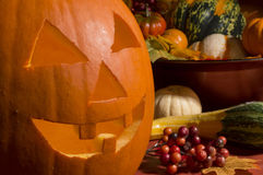 Hungry pumpkin. Jack o lantern with gourds and berries stock image