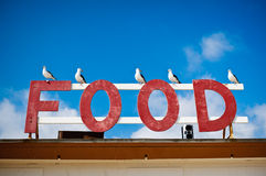 Hungry Seagulls. Some seagulls gather at a food sign hoping to catch a bite Royalty Free Stock Photos