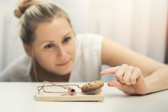 Free Hungry Woman Trying To Steal Cookie From Mouse Trap Stock Photography - 104067582