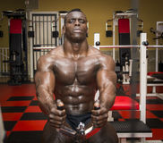 Hunky muscular black bodybuilder working out in Royalty Free Stock Photo