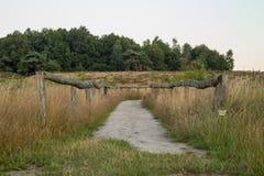 Hunnebed nummer D53 i Drenthe, Nederländerna Royaltyfri Fotografi