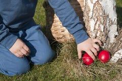 hunt пасхи Стоковые Фотографии RF