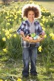 hunt поля пасхального яйца daffodil мальчика стоковые фотографии rf