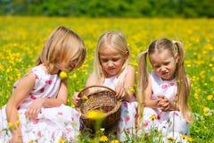 hunt яичек пасхального яйца детей Стоковое Изображение RF
