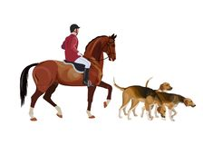 Hunt master and pack hounds vector illustration
