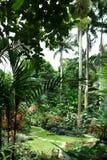 Hunte-` s Gärten Barbados lizenzfreies stockbild
