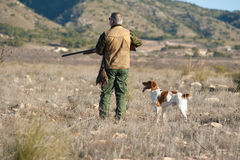 Hunter. Quail hunter in camouflage clothing walking across the field Royalty Free Stock Photo
