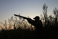 The hunter. Silhouette of the hunter on a background of a morning dawn Stock Photography