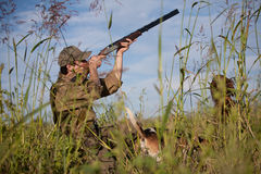 Hunter aiming the hunt, dogs waiting for the shot