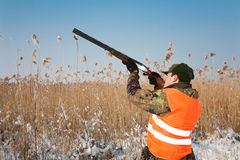 Hunter aiming at the hunt. Hunting dog waiting Royalty Free Stock Photography