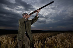 Hunter aiming rifle towards sky in wheat field Stock Photography