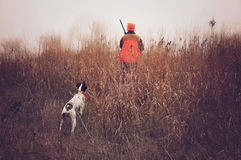 Pheasant hunter and bird dog in field. Hunter and bird dog on point stock photos