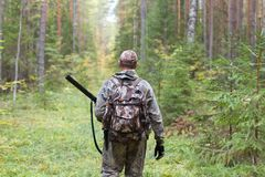 Hunter in camouflage with hunting gun in the forest Royalty Free Stock Image