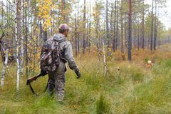 Hunter in camouflage with shotgun walking in the forest Stock Photo