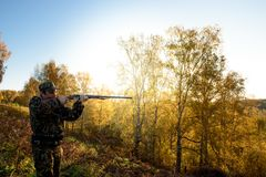 Hunter at dawn. A hunter with a gun in the forest at dawn Stock Photos