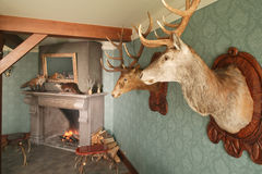 hunter dekoracji. Fotografia Stock