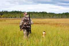 Hunter with a dog crosses the swamp Stock Photo