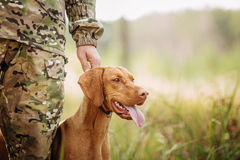 Hunter with a dog on the forest. Yang hunter with a dog on the forest royalty free stock photo