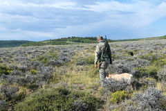 Hunter with dog walking through field for hunting. Hunter with dog walking through field for coyote hunting, Southwest Wyoming, USA Royalty Free Stock Image